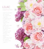 Tulips, lilac and roses flowers background isolated on white with sample text — Stock Photo