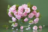 Bunch of tea roses — Stock Photo