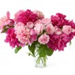 Huge bunch of peonies and cream roses in vase isolated on white — Stock Photo #63369905