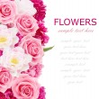 Flowers background with peonies, tulips and roses isolated on white with sample text — Stock Photo #63370169