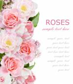 Roses, lilac flowers and tulips background isolated on white with sample text — Stock Photo