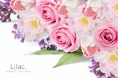 Lilac, roses and tulips flowers background isolated on white with sample text — Foto Stock