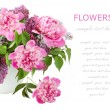 Huge bunch of pink peonies and lilac in vase isolated on white with sample text — Stock Photo #64142747