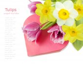 Tulips and narcissus bunch with present box as heart isolated on white background. Valentine's day concept — Stock Photo