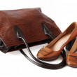 Pair of female shoes and handbag over white.Leather goods — Stock Photo #64681959