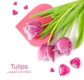 Pink tulips and heart box shape isolated on white background with sample text. Valentine Day concept, Love concept., Valentine's day concept. Wedding concept — Stock Photo