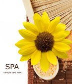 SPA (wooden spoon with salt, fan and lily flowers isolated on white background with sample text) — Stock Photo
