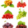 Set of fruits and berries (plum, apricot, grapes, cherry, raspberries and mulberry) with fresh leaves isolated on white background. — Stock Photo #65160817