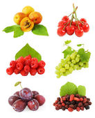 Set of fruits and berries (plum, apricot, grapes, cherry, raspberries and mulberry) with fresh leaves isolated on white background. — Stock Photo