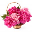 Basket of pink and purple peonies isolated on white — Stock Photo #65352473