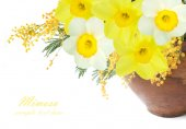 Mimosa and narcissus flowers bunch isolated on white background — Stock Photo
