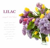 Rich bouquet with lilac and tulips isolated on white with sample text — Stockfoto