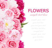 Flowers background isolated on white with sample text. Peony, roses and tulips — Foto de Stock