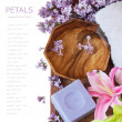 Lilac spa (fresh lilac flowers,spa salt, zen stones, Herbal massage balls, towel) on a wooden bord (with easy removable text) — Stock Photo #69686945