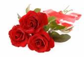 Bunch of velvet red roses isolated on white — Stock Photo