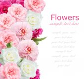 Peony and roses background isolated on white — Stock Photo