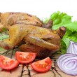 Trophies: delicious roasted woodcocks with fresh vegetables. — Stock Photo #63385441