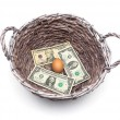 Money and an egg in the basket isolated on a white background — Stock Photo #73676503