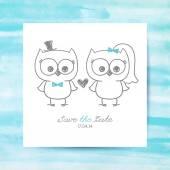 Wedding owls — Stock Vector