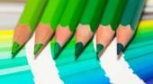 Green colored pencils — Stock Photo