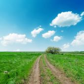Dirty road in green fields and blue sky with clouds — Stock Photo