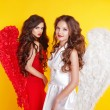 Two Attractive Women wearing in angel costume with wings isolate — Stock Photo #55522925
