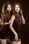 Beautiful two Young women with long healthy wavy hair styling an — Stok fotoğraf