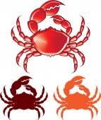 Jumbo Crab vector — Vector de stock