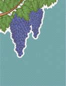 Grapes on a vine Vector Background pop art — 图库矢量图片
