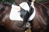 Close up of rider during dressage competition — Foto de Stock