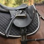 Black saddle on black horse — Stock Photo #56190513