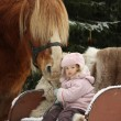 Cute little girl sitting in the sledges and big palomino draught — Stock Photo #60039159
