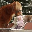 Cute little girl sitting in the sledges and big palomino draught — Stock Photo #60039191