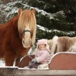 Cute little girl sitting in the sledges and big palomino draught — Stock Photo #60039239
