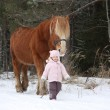 Cute little girl leading big draught horse in winter — Stock Photo #61313861