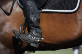 Close up of rider leg with spur — Stock Photo