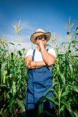 Farmer inspecting corn plant in field — Stock Photo