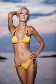 Bikini — Стоковое фото