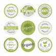 Natural organic product labels — Stock Vector #65037521