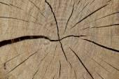 Cracked wood background — Stock Photo