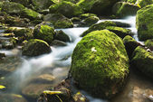 Rocks and streams — Stock Photo