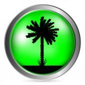 Bouton de Palm — Vecteur