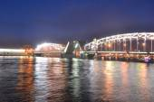 Peter the Great Bridge at night — Stock Photo