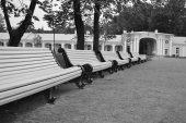 Empty benches in the park. — Stock Photo