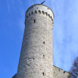 Pikk Hermann tower in Tallinn. — Stock Photo #72190781