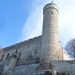 Pikk Hermann tower in Tallinn. — Stock Photo #72368483