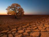 Milieux environnementaux abstraites — Photo
