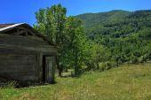 Lonely hut — Stock Photo
