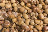 Native raw chestnut — Photo