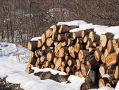 Stack of oak wood in  winter — Stock Photo